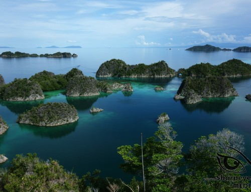Indonesia – If paradise is half as nice –