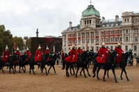 several black horses and troopers during change of guards in london